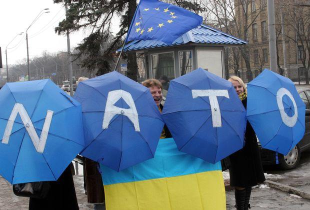 Украина может выполнить критерии, необходимые для вступления в НАТО, за 5-6 лет, - Божок - Цензор.НЕТ 1194