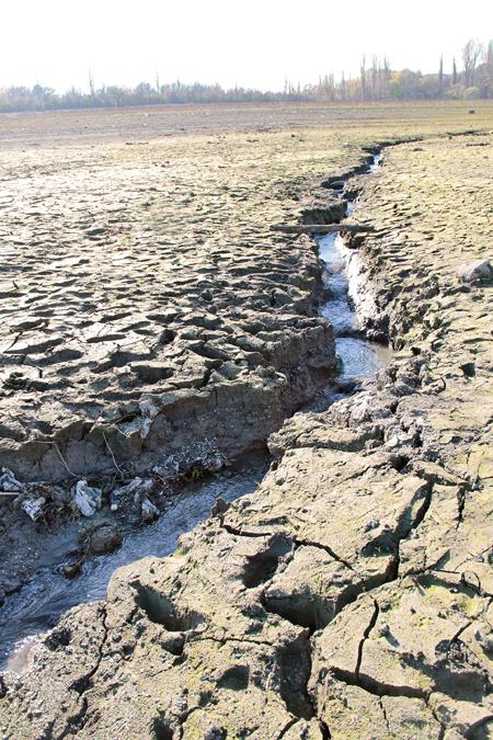 Коли річище салгира майже пересихає