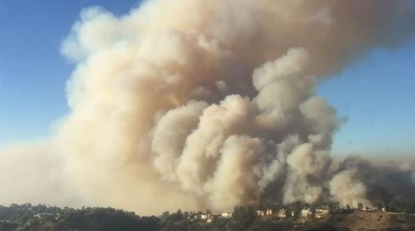 В Лос-Анджелесе установили самый высокий в истории уровень пожарной опасности