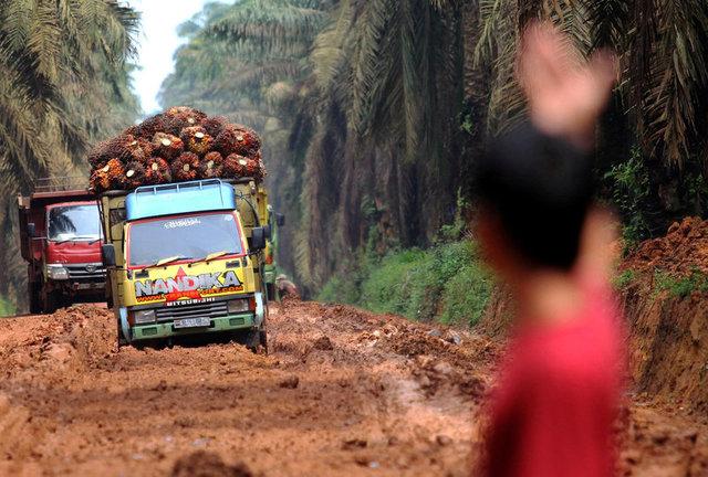 Наострові Суматра зафіксовано землетрус магнітудою 6,5