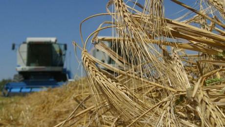 Гройсман дасть мільярд на підтримку фермерів