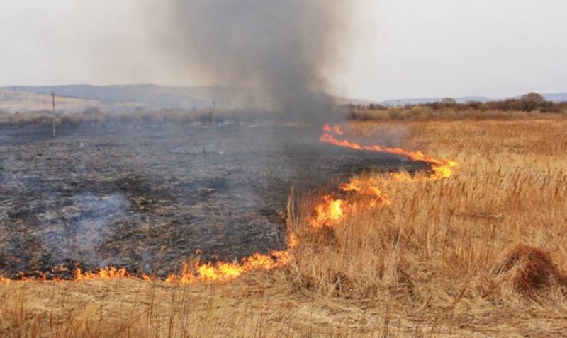 Задве недели августа устранено 4759 пожаров— Украина впламени