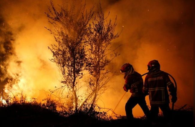 Лісові пожежі вПортугалії: 37 загиблих, понад 70 постраждалих