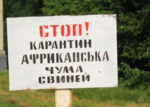 Новые вспышки АЧС зафиксированы еще в 3-х областях Украинского государства