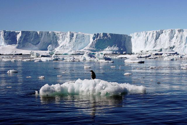Танення арктичних льодів - це міф?