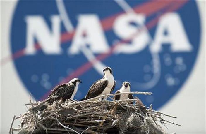 НАСА практически готово сообщить ожизни на иных планетах