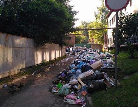 Львовская ОГА: Львов напротяжении 2-х недель будет очищен отмусора