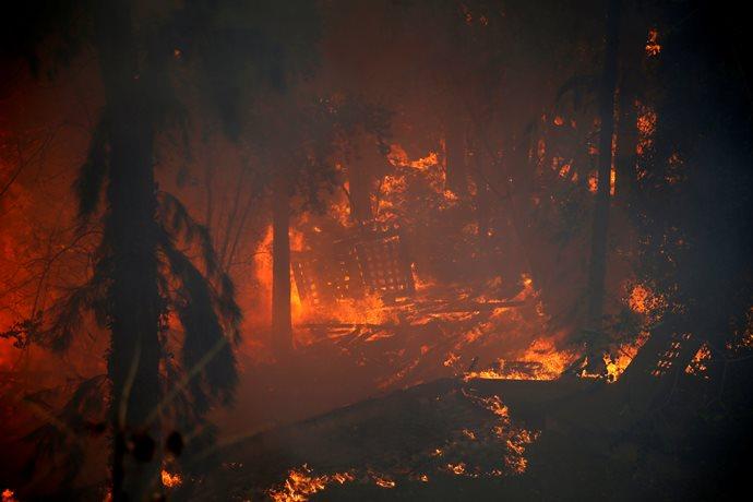 Самолеты МЧС совсем скоро начнут тушение пожаров вИзраиль