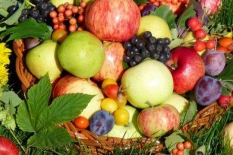 Минагрополитики: Майские заморозки на29% уменьшат урожай плодово-ягодных ивинограда