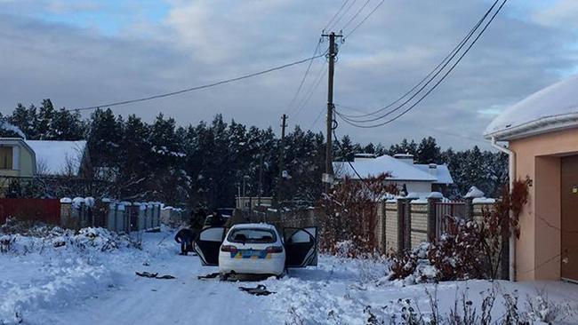 Геращенко объявил опередаче новых дел всуд— Стрельба вКняжичах