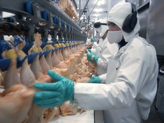 Украина ввела запрет наимпорт птицы Австрии иГермании