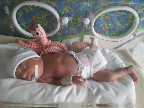 У Тернополі для передчасно народжених дітей реалізовується проект «Чудо-восьминіжки»