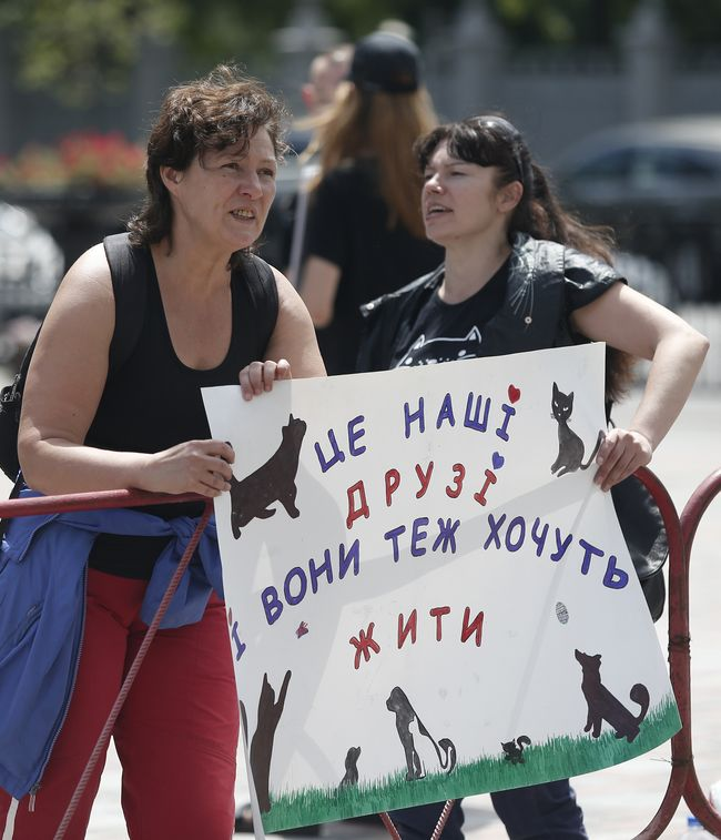 Порошенко одобрил ужесточение наказания за зверское обращение сживотными